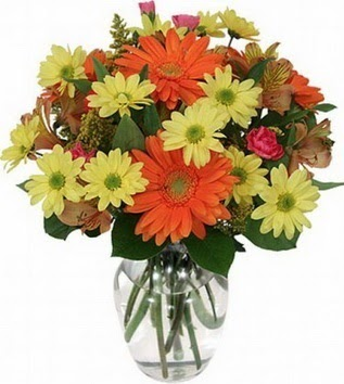 Uşak hediye sevgilime hediye çiçek  vazo içerisinde karışık mevsim çiçekleri