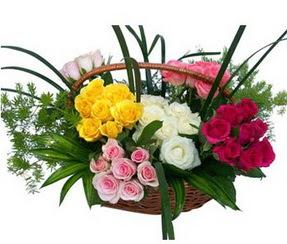 Uşak ucuz çiçek gönder  35 adet rengarenk güllerden sepet tanzimi