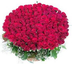 Uşak online çiçekçi , çiçek siparişi  100 adet kırmızı gülden görsel buket