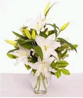 Uşak çiçek gönderme  2 dal cazablanca vazo çiçeği