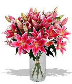 4 dal cazablanca görsel vazosu  Uşak çiçekçi mağazası