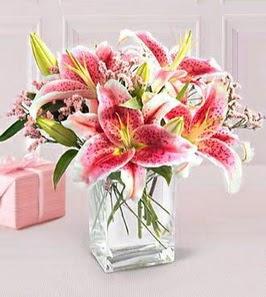 2 dal kazablanka görsel vazosu  Uşak çiçek siparişi sitesi