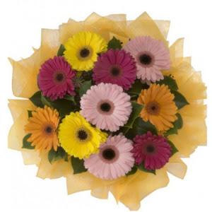 Uşak İnternetten çiçek siparişi  11 adet karışık gerbera çiçeği buketi