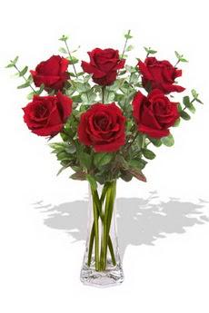 Uşak çiçekçi mağazası  6 kırmızı gül vazosu