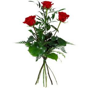 Uşak uluslararası çiçek gönderme  3 adet kırmızı gülden buket