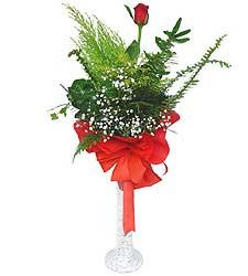Uşak anneler günü çiçek yolla  Cam vazoda masum tek gül