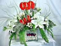 Uşak çiçek mağazası , çiçekçi adresleri  Anthurim Kazablanka  gül