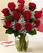 Sevgilime hediye 9 adet 1.ci kalite gül  Uşak anneler günü çiçek yolla