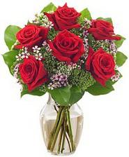 Kız arkadaşıma hediye 6 kırmızı gül  Uşak internetten çiçek siparişi