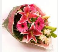 1 dal kazablanka ve mevsim çiçekleri  Uşak internetten çiçek siparişi