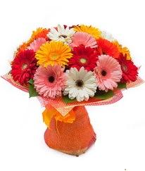 Renkli gerbera buketi  Uşak anneler günü çiçek yolla