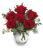 Vazo içerisinde 5 adet kırmızı gül  Uşak çiçekçi mağazası