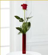 Vazo içerisinde 1 adet kırmızı gül  Uşak internetten çiçek siparişi