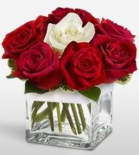 Tek aşkımsın çiçeği 8 kırmızı 1 beyaz gül  Uşak uluslararası çiçek gönderme