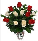 Vazo içerisinde 6 kırmızı 6 beyaz gül  Uşak hediye çiçek yolla