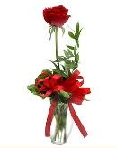vazo içerisinde 1 adet kırmızı gül  Uşak çiçekçi telefonları