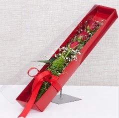 Kutu içerisinde 3 adet kırmızı gül  Uşak online çiçek gönderme sipariş