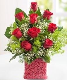Cam içerisinde 9 adet kırmızı gül  Uşak internetten çiçek satışı