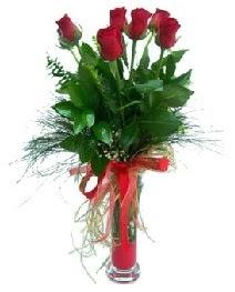 vazo içerisinde 5 kırmızı gül  Uşak güvenli kaliteli hızlı çiçek