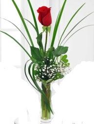 Cam içerisinde 1 kırmızı gül  Uşak çiçek gönderme sitemiz güvenlidir