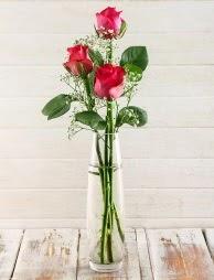 Cam içerisinde 3 kırmızı gül  Uşak çiçek satışı