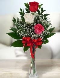 Camda 2 kırmızı 1 beyaz gül  Uşak ucuz çiçek gönder