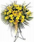 Uşak yurtiçi ve yurtdışı çiçek siparişi  Sari kazablanka Ferforje