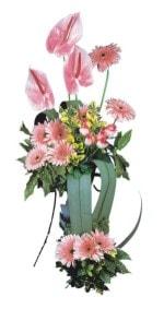 Uşak güvenli kaliteli hızlı çiçek  Pembe Antoryum Harikalar Rüyasi