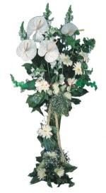 Uşak çiçek mağazası , çiçekçi adresleri  antoryumlarin büyüsü özel