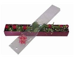 Uşak anneler günü çiçek yolla   6 adet kirmizi gül kutu içinde