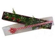 Uşak hediye çiçek yolla  3 adet gül.kutu yaldizlidir.