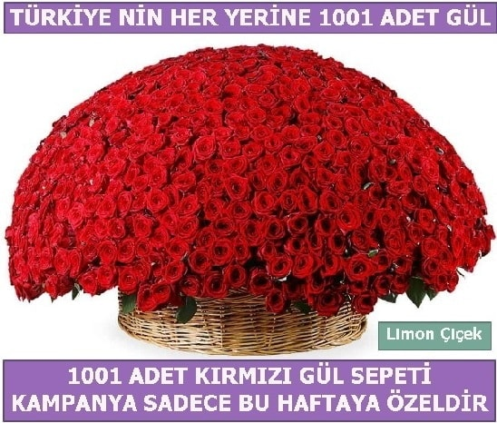 1001 Adet kırmızı gül Bu haftaya özel  Uşak İnternetten çiçek siparişi