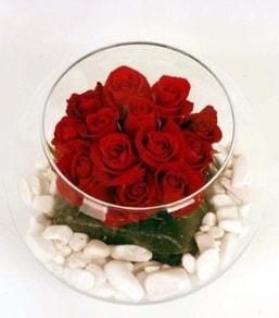 Cam fanusta 11 adet kırmızı gül  Uşak çiçek gönderme
