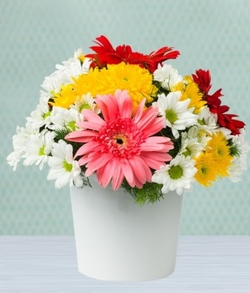 Seramik Vazoda Gelbera ve Papatya  Uşak çiçek gönderme