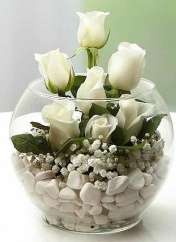 Beyaz Mutluluk 9 beyaz gül fanusta  Uşak çiçek siparişi sitesi
