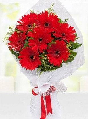 Kırmızı Gelbera Buketi  Uşak internetten çiçek siparişi
