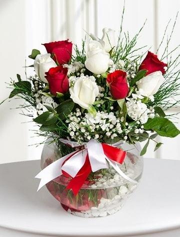 Aşk Küresi  5 beyaz 5 kırmızı gül fanusta  Uşak internetten çiçek satışı