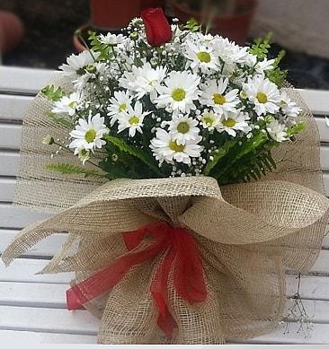 Papatya 1 adet kırmızı gül buketi  Uşak çiçekçiler