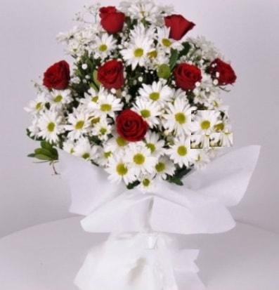 7 adet kırmızı gül ve papatyalar krizantem  Uşak internetten çiçek satışı