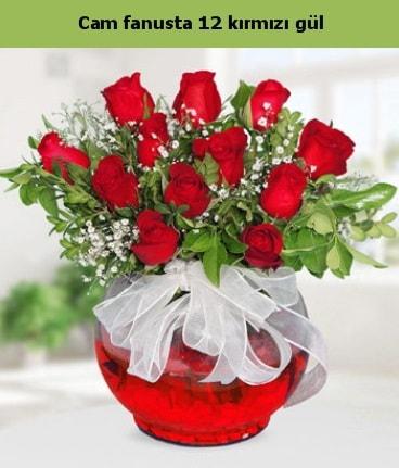 Cam içerisinde 12 adet kırmızı gül  Uşak internetten çiçek satışı