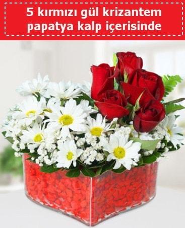 mika kalp içerisinde 5 kırmızı gül papatya  Uşak çiçek gönderme
