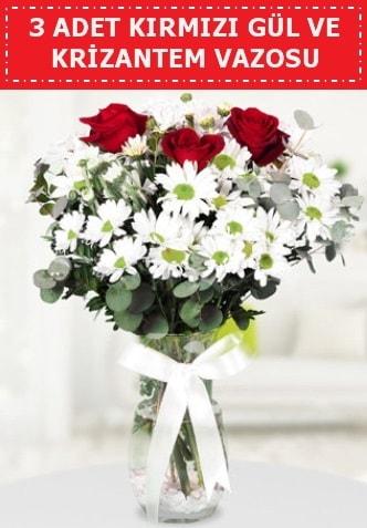 3 kırmızı gül ve camda krizantem çiçekleri  Uşak çiçek gönderme