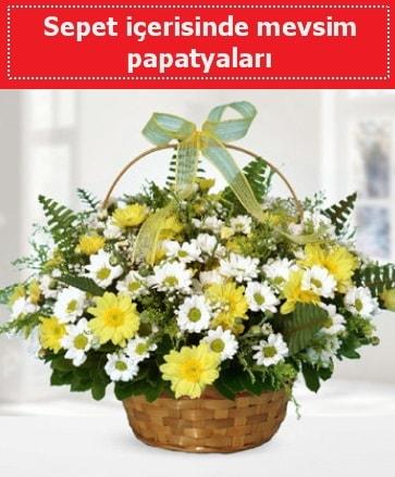 Sepet içerisinde mevsim papatyaları  Uşak ucuz çiçek gönder