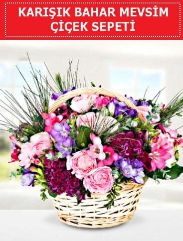 Karışık mevsim bahar çiçekleri  Uşak ucuz çiçek gönder