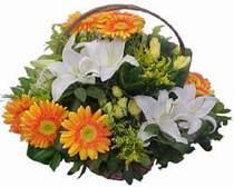 Uşak online çiçekçi , çiçek siparişi  sepet modeli Gerbera kazablanka sepet