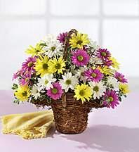 Uşak çiçekçiler  Mevsim çiçekleri sepeti